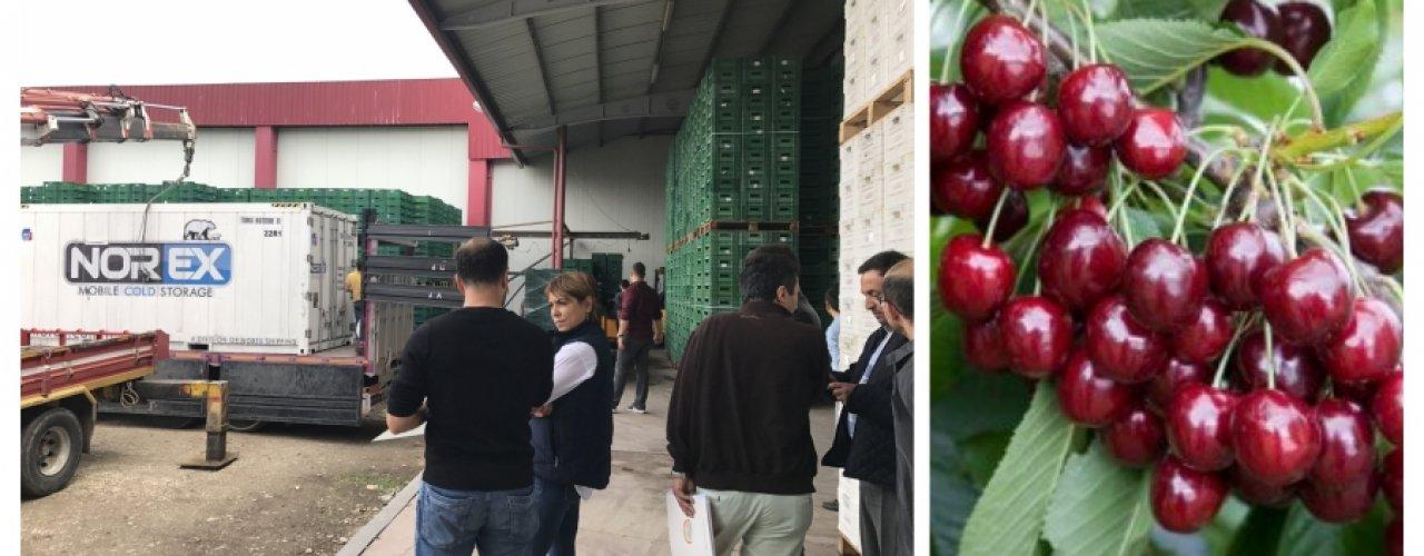 Manisa Kirazı Çin ' e Norex Cold Store Soğuk Hava Konteynerleri ile giriş yapacak
