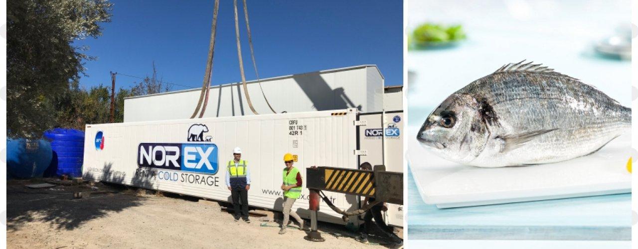 Sektörün Önde Gelen Balık Yetiştiricisi Firması Norex Mobil Soğuk Hava Konteynerimizi Uzun Dönem Kiraladı.
