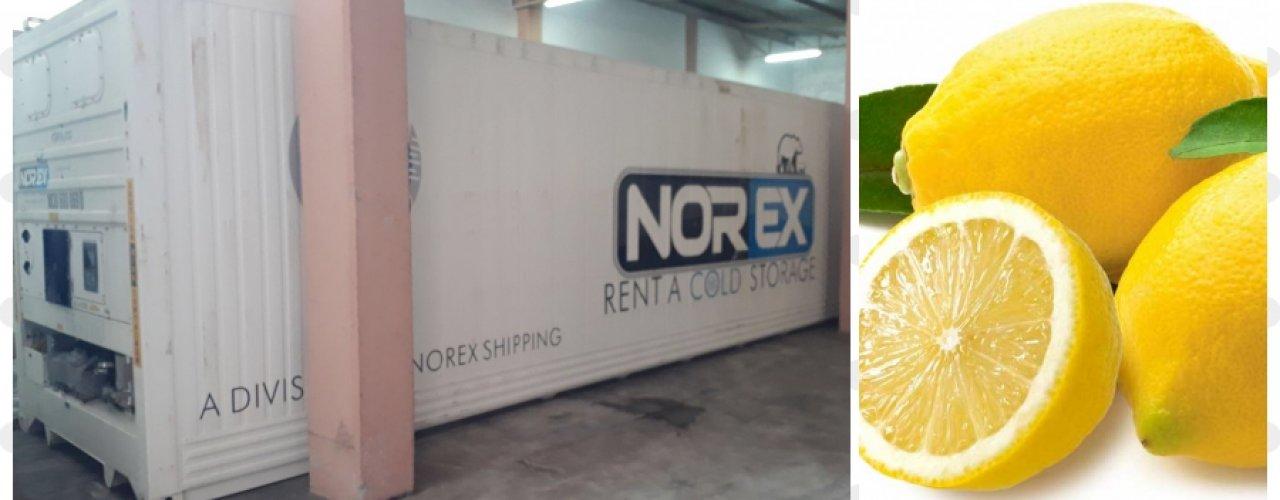 Mersin de Yerleşik Limon Suyu Üreticisi Müşterimiz Soğuk Hava depo İhtiyacını Norex ile Çözdü