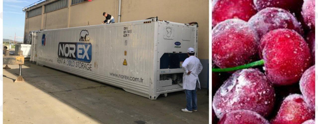 Donuk Meyve Üretimi Yapan Müşterimiz Norex Mobil Soğuk Hava Deposunu Kiraladı